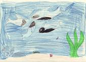 Children�s Art for The Whales� Secret